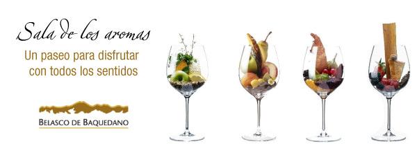 Sala de los aromas, Belasco de Baquedano, Caminos del Vino